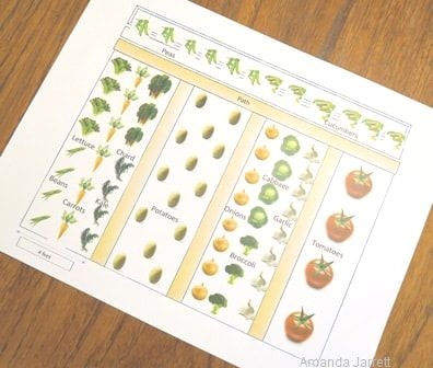 vegetable gardening,crop rotation,crop succession,companion planting,interplanting,May flowers, May garden journal,The Garden Website,com,Amanda's Garden Consulting,Amanda Jarrett,garden website