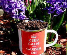 spring gardening,April gardens,April gardening,the garden website.com,Lee Valley Tools,Amanda's Garden Consulting,Amanda Jarrett